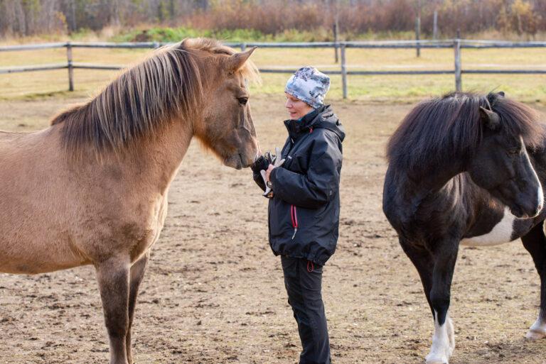 Hästunderstödda aktiviteter